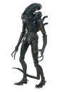 Aliens Actionfigur 1/4 1986 Warrior 56 cm