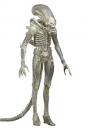 Alien 1979 Actionfigur 1/4 Transculent Prototype Suit Concept 56 cm