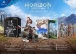 Horizon Zero Dawn  Collector´s Edition - Playstation 4
