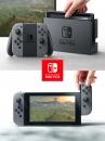 Nintendo Switch  Konsole - Grau - Nintendo Switch
