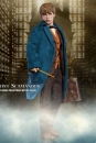 Phantastische Tierwesen My Favourite Movie Actionfigur 1/6 Newt Scamander 30 cm