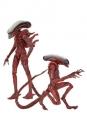 Aliens Genocide Actionfiguren Doppelpack Big Chap & Dog Alien 23 cm