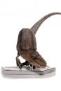 Jurassic Park Art Scale Statue 1/10 Crouching Velociraptor 29 cm