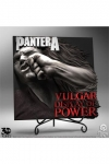 Pantera 3D Vinyl Statue Vulgar Display of Power 30 cm