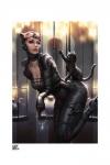 DC Comics Kunstdruck Catwoman: All Tied Up by Kendrick Lim 46 x 61 cm - ungerahmt
