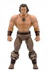 Conan der Barbar Ultimates Actionfigur Conan Iconic Movie Pose 18 cm
