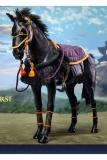 Cool Toys Actionfigur 1/6 Samurai-Pferd