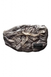 Wonders of the Wild Mini-Replik Concavenator Fossil 31 cm