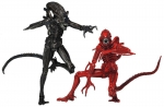 Aliens Actionfiguren Doppelpack Genocide 23 cm