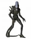 Alien 1979 Actionfigur 1/4 Alien Xenomorph 56 cm